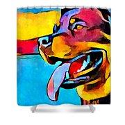 Rottweiler Shower Curtain