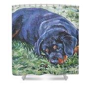 Rottweiler Puppy Shower Curtain