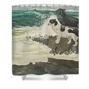 Roughsea Shower Curtain