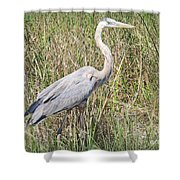 Rougning It Shower Curtain