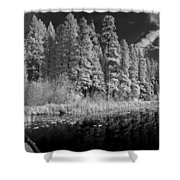 Round Lake State Park 4 Shower Curtain