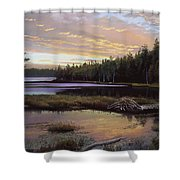Round Pond Shower Curtain