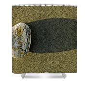Round Rock And Shadow On Sand Dollar Shower Curtain