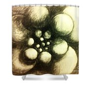 Round They Revolve  Shower Curtain