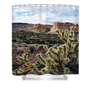 Route 66 Mojave Desert Landscape Shower Curtain