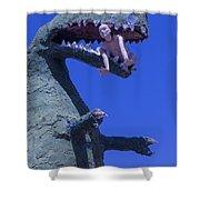 Route 66 Roadside Dinosaur Shower Curtain