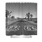 Route 66 With Joshua Trees In Black And White Shower Curtain