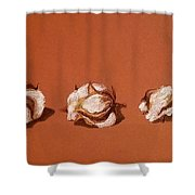 Row Of Cotton Shower Curtain