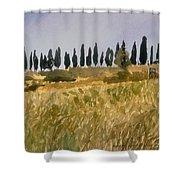 Row Of Cypress Trees, Tuscany Shower Curtain