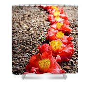 Row Of Flowers Shower Curtain