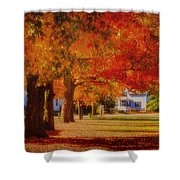Row Of Maples Shower Curtain