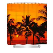 Row Of Palms Shower Curtain