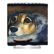 Roxie Shower Curtain
