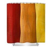 ROY Shower Curtain