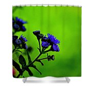 Royal Blue In A Sea Of Green Shower Curtain