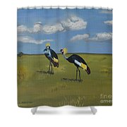 Royal Cranes Shower Curtain