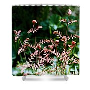 Royal Fern Fronds Shower Curtain