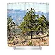 Royal Gorge Bridge Vista 1 Shower Curtain