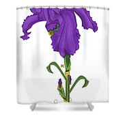 Royal Iris II Shower Curtain