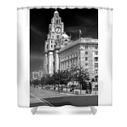 Royal Liver Buildings_beatle Country Shower Curtain