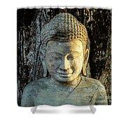 Royal Palace Buddha 02  Shower Curtain
