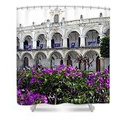 Royal Palace Old Antigua Shower Curtain