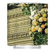 Royal Palace Shrine 04  Shower Curtain