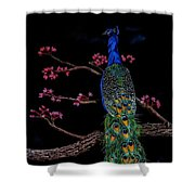 Royal Peacock Shower Curtain