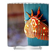 Royal Walnut Moth Shower Curtain