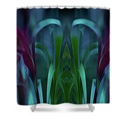 Royalty Transfigured Shower Curtain