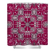 Rubies And Silver Kaleidoscope Shower Curtain