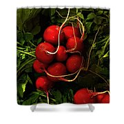 Rubies From The Field Shower Curtain