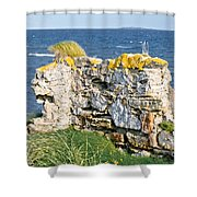 Ruby Bay. Leftovers Of The Wall. Shower Curtain