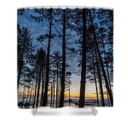 Ruby Beach Through The Trees Shower Curtain
