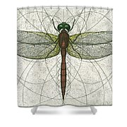 Ruby Meadowhawk Dragonfly Shower Curtain