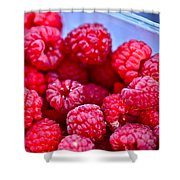 Ruby Raspberries Shower Curtain