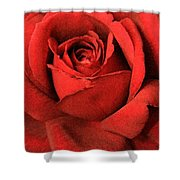 Ruby Rose Shower Curtain
