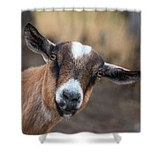 Ruby The Goat Shower Curtain