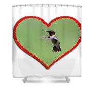 Ruby-throated Hummingbird In Heart Shower Curtain by Dan Friend