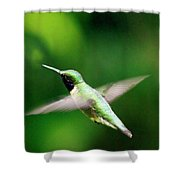 Ruby-throated Shower Curtain