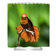 Ruby's Glory Shower Curtain