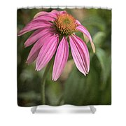 Rudbeckia Morning Shower Curtain