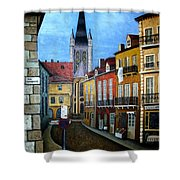 Rue Lamonnoye In Dijon France Shower Curtain