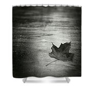 Rue Malebranche Shower Curtain