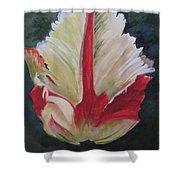 Ruffled Tulip  Shower Curtain