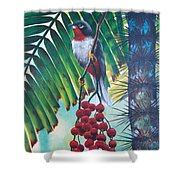 Rufous-throated Solitaire Shower Curtain