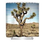 Rugged Joshua Tree Shower Curtain