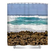 Rugged Shores Shower Curtain