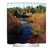 Ruins In Fall Shower Curtain