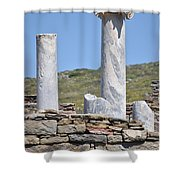 Ruins Of Delos Shower Curtain